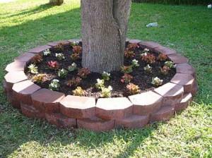 оформление деревьев