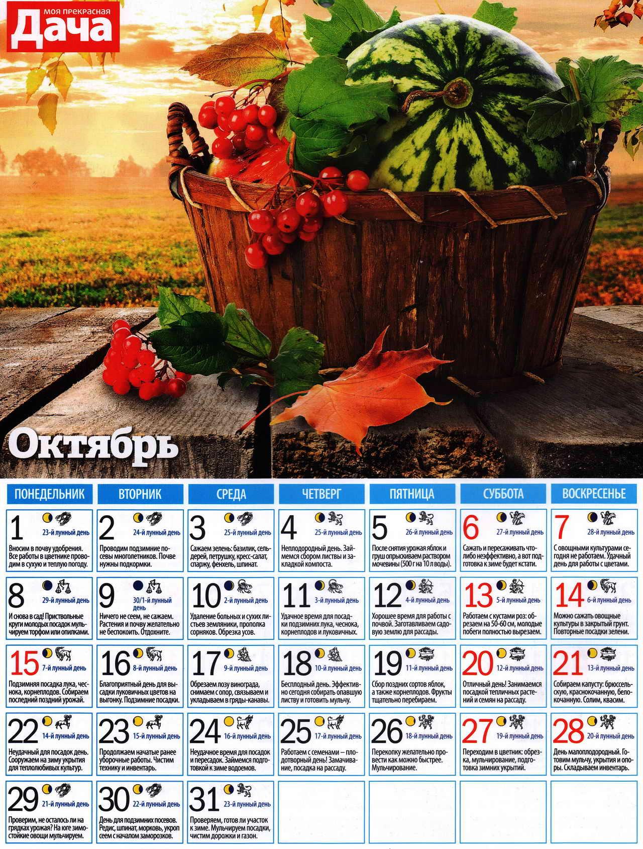 посевной лунный календарь на октябрь
