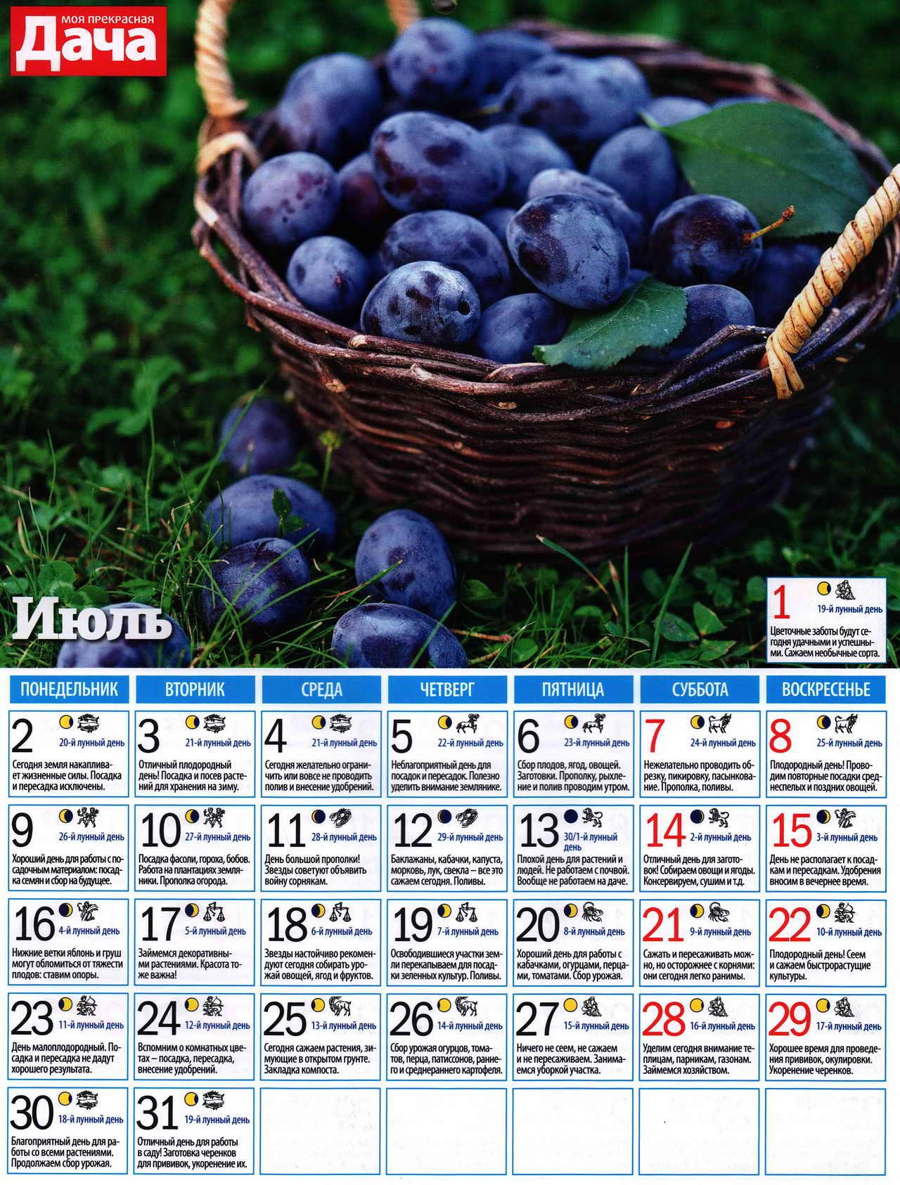 посевной лунный календарь на июль