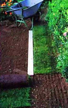 укладка газона на участке