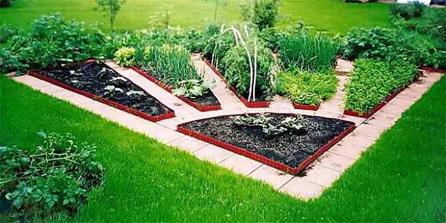 Красивое решение для посадки зелени