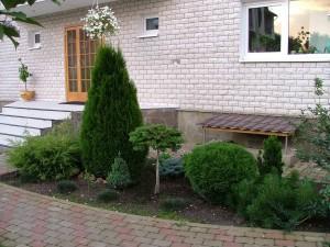 Композиция из растений на дачном участке