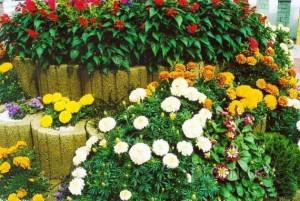 Цветник на загородном участке
