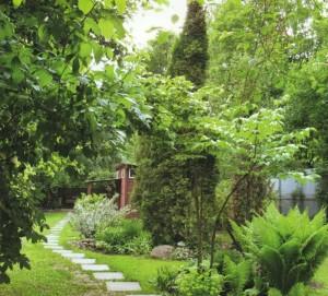 Озелененный загородный участок