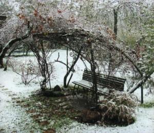Пергола зимой