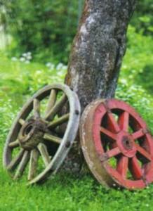 Оформление садового дерева