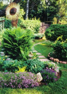 Декоративный подсолнух в саду