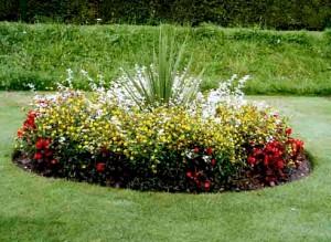 Украшение садового участка цветами