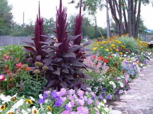 Бордюр с цветами