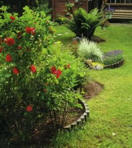 Ухоженная клумба в саду