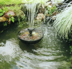 Самодельный пруд из ванны с фонтаном