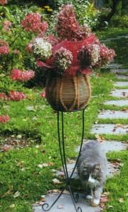 Гортензии на садовой лужайке