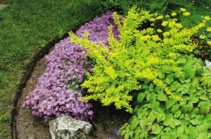 Ремонт газона возле цветника