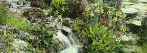 Небольшой декоративный водопад