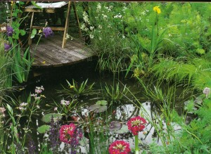 Декоративный пруд на садовом участке