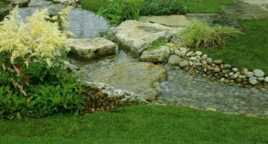 Озеленение садового ручья