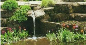 Дачный пруд с водопадом