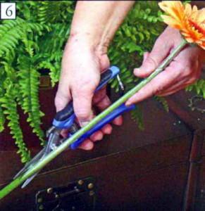 Определение длины цветка