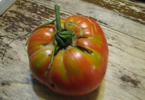 Трещины на поверхности помидора