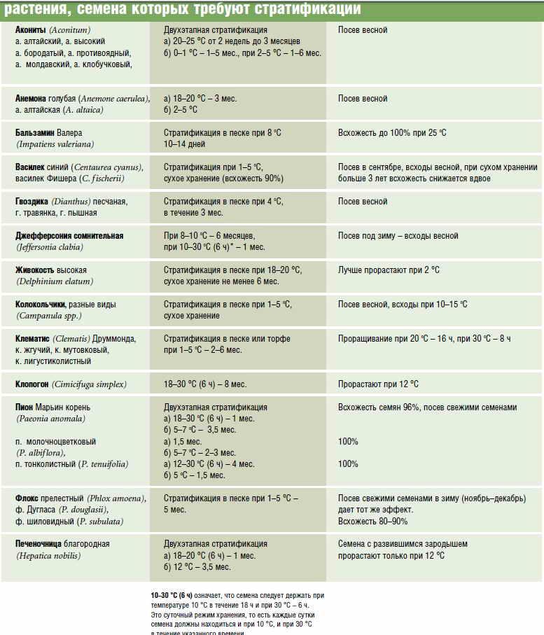 Советы по стратификации семян