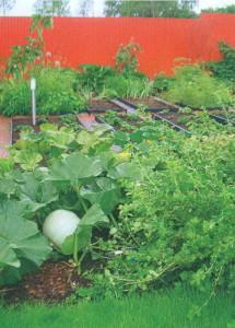 Зона декоративного огорода