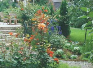 Живые бордюры с цветами