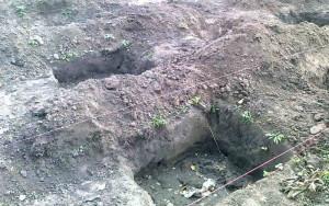 Посадочные ямы в винограднике