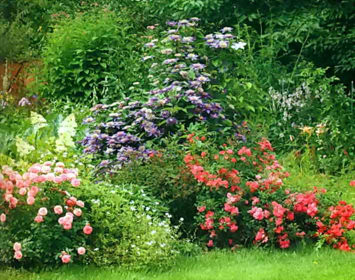 Идеальное цветовое сочетание для сада
