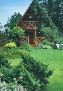 Многообразие растений в саду