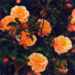 Цветы Седана
