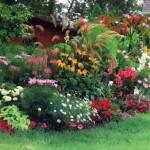 Разнообразные цветы в саду