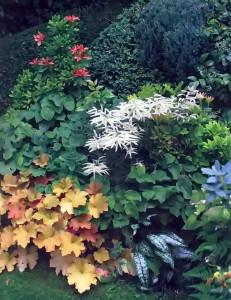 Эффектные сочетания растений