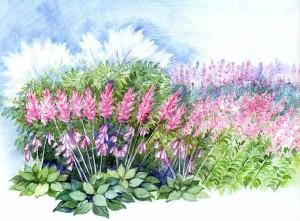 Цветущий цветник для полутени