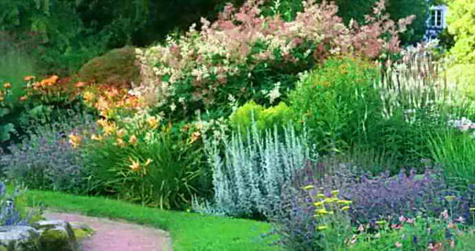 Обращаем внимание на цвет растений