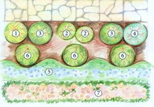 Схема композиции 6 х 3,5 м