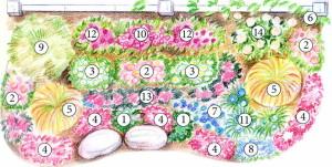 Схема цветника с декоративными злаками