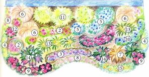 Схема распределения цветов