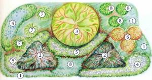 Схема построения цветника