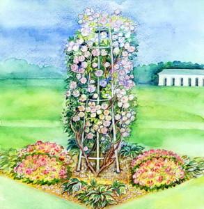Клумба с плетистой розой