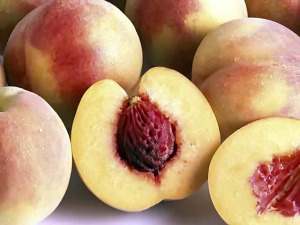 Выбор семян персиков