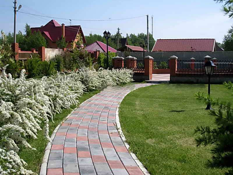 Цветочные кустарники вдоль дачной дорожки