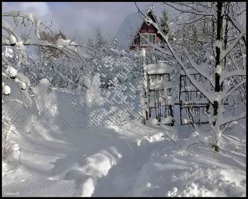 zima_na_dache2