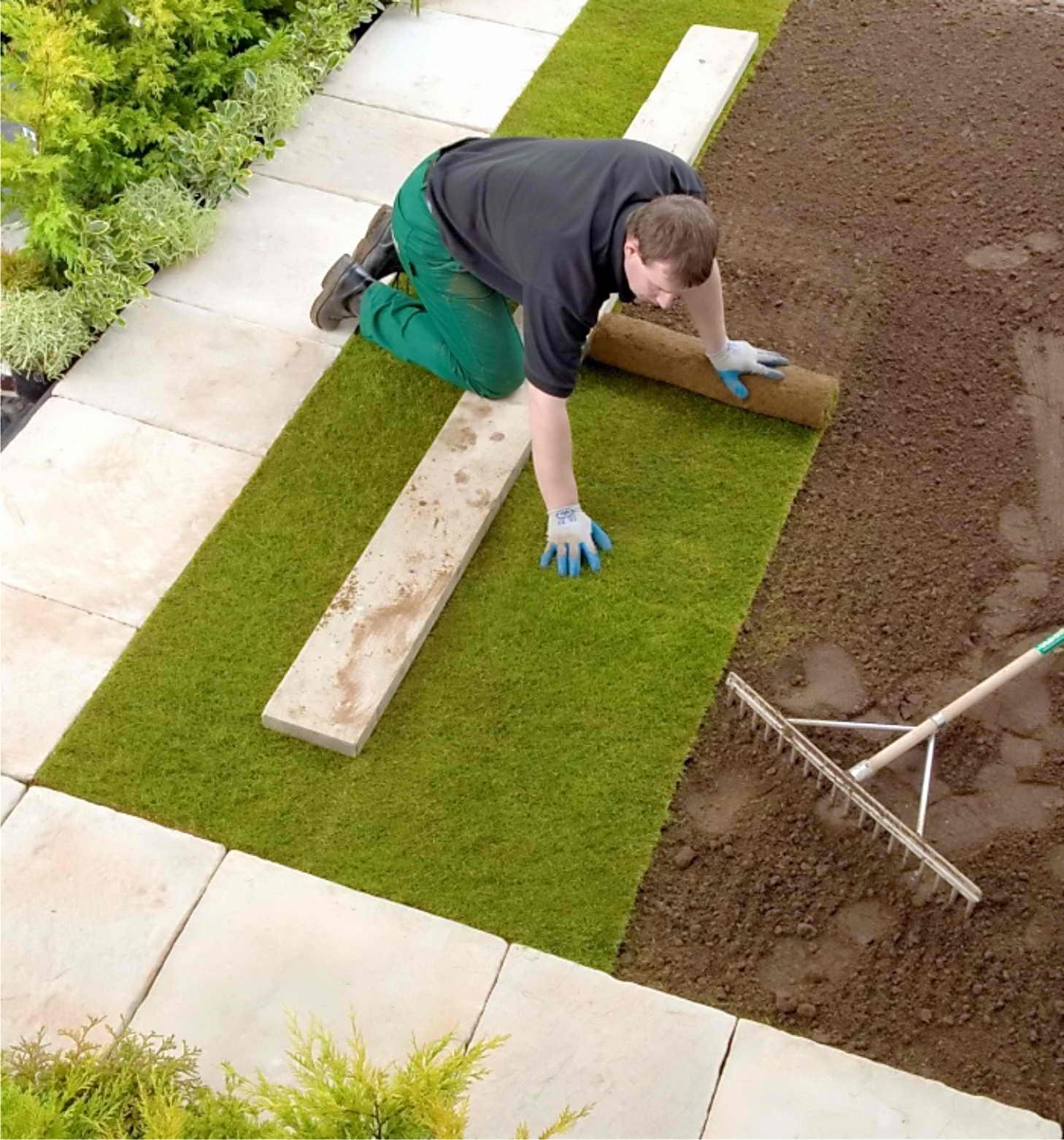 Как сделать хороший газон на даче своими руками