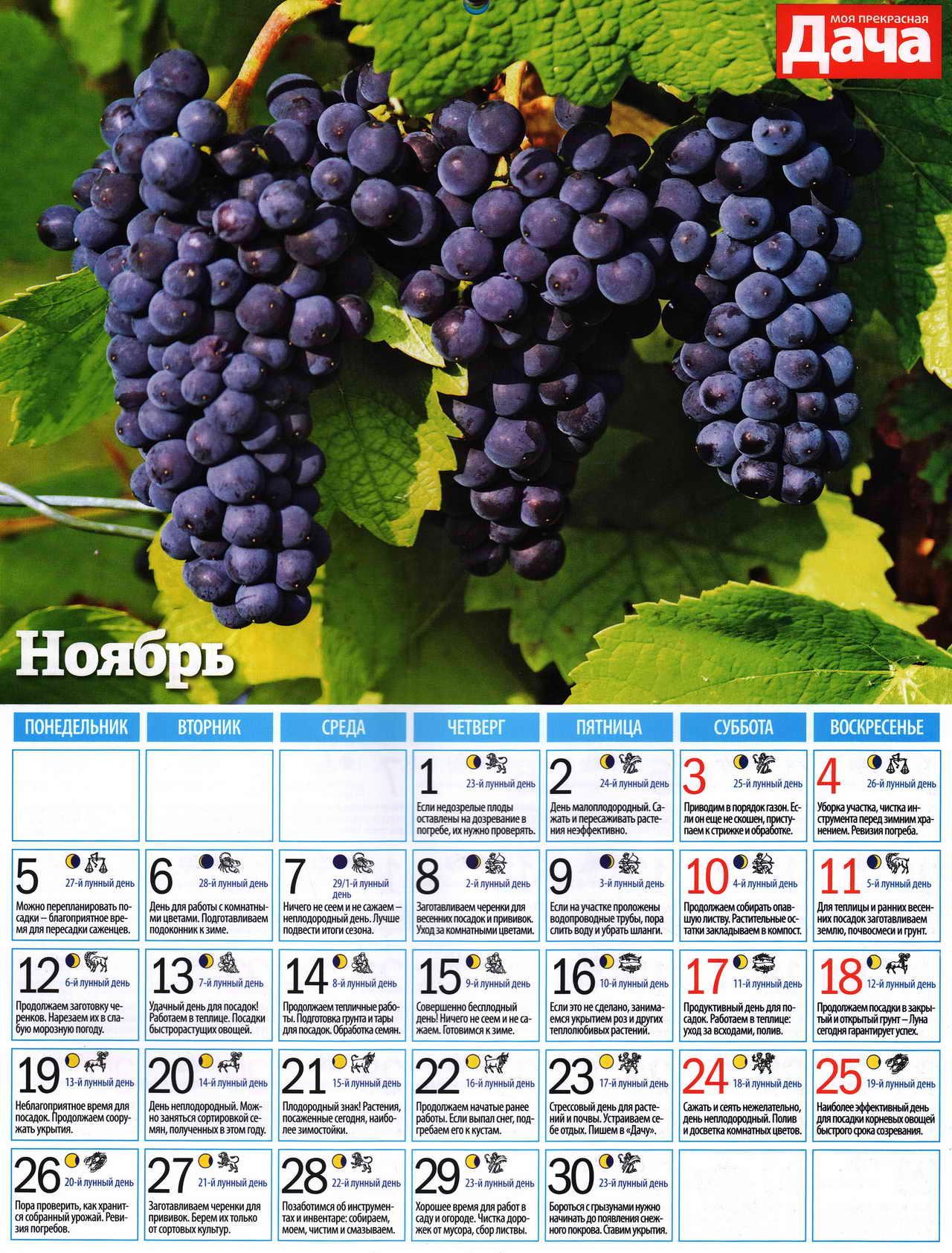 посевной лунный календарь на ноябрь