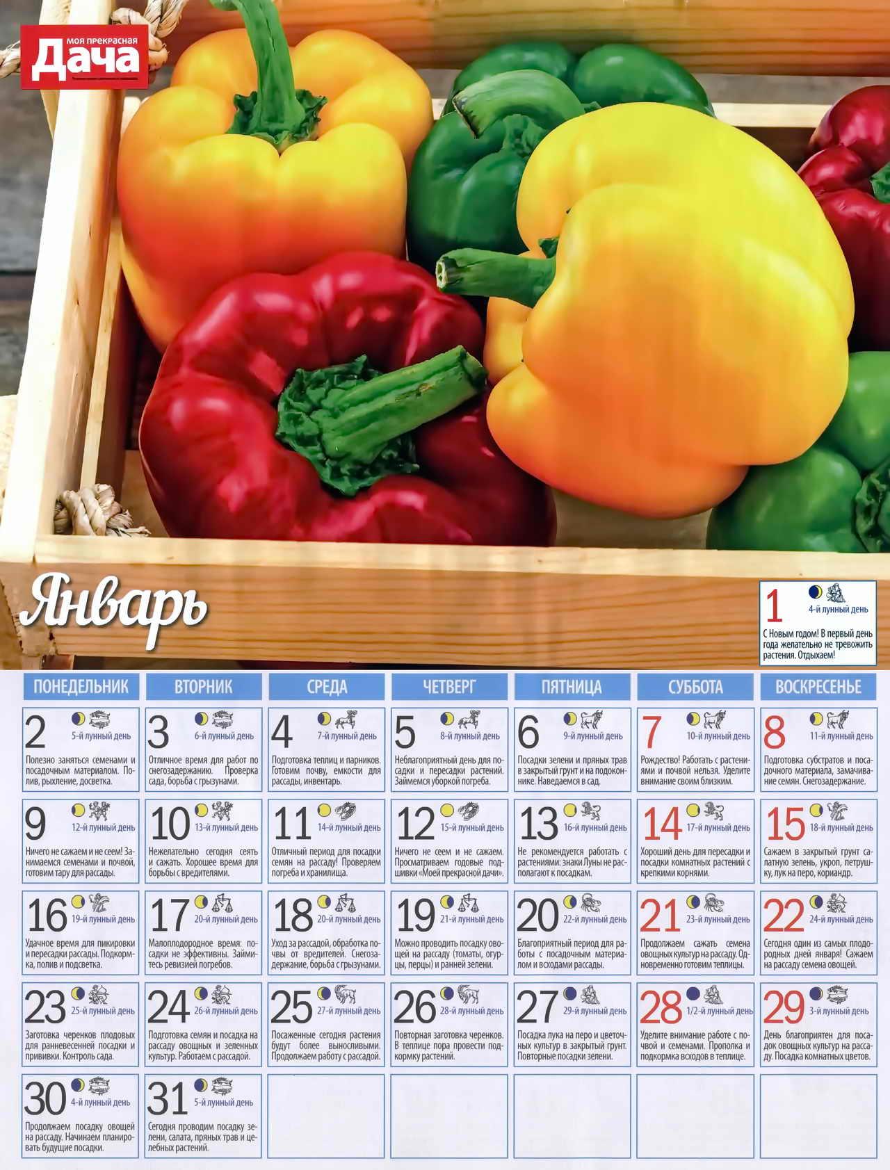 посевной лунный календарь на январь
