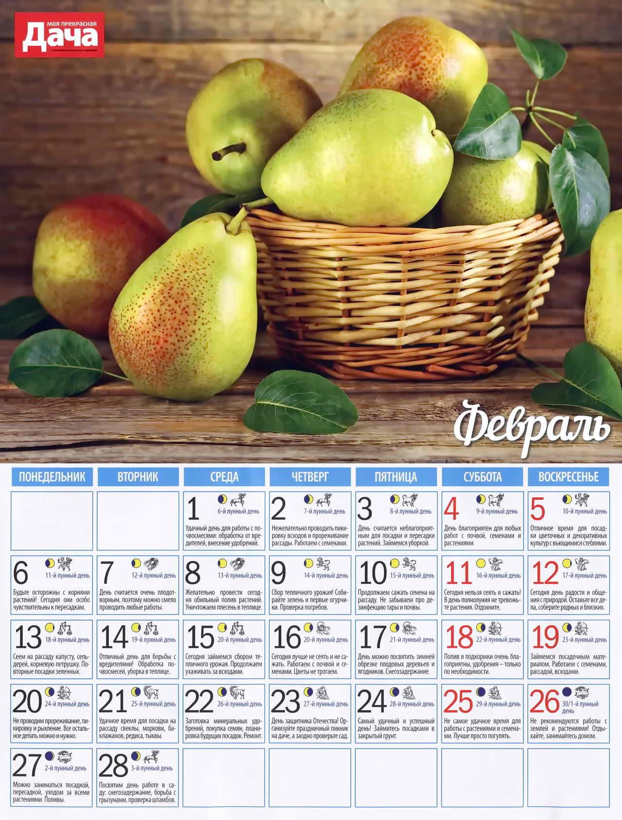 посевной лунный календарь на февраль