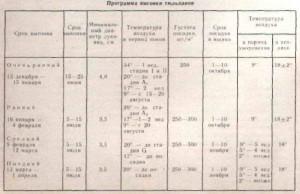 programma-vigonki-tulpanov